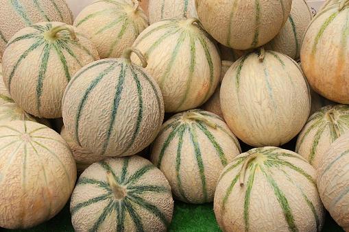 メロン「メロン Cantalopes トスカーナの農家マーケット」:スマホ壁紙(5)