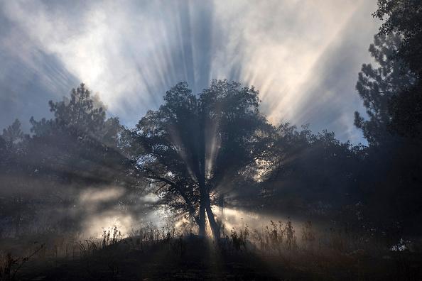 San Bernardino National Forest「Apple Fire In Southern California Forces Evacuations」:写真・画像(4)[壁紙.com]