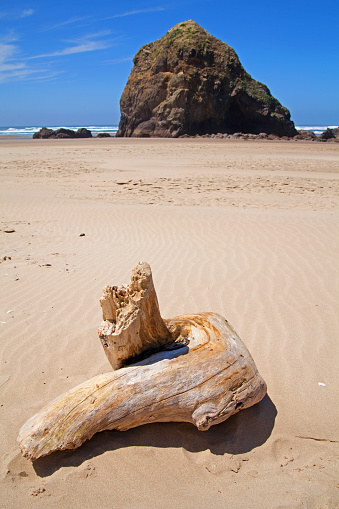 Cannon Beach「driftwood rock Cannon beach」:スマホ壁紙(1)