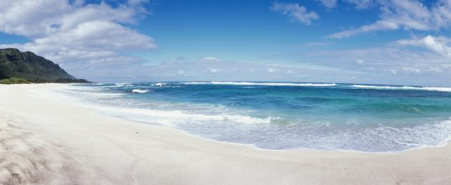 南国「Surf on beach」:スマホ壁紙(0)
