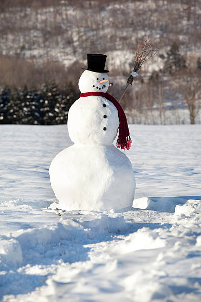 well done snowman:スマホ壁紙(壁紙.com)