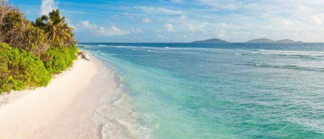 Frond「Desert island beach turquoise ocean lagoon palm trees empty sand」:スマホ壁紙(9)