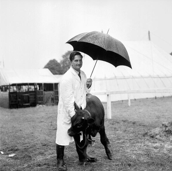 Umbrella「Sussex County Show」:写真・画像(0)[壁紙.com]