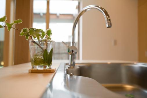 スイセン「Kitchen Sink」:スマホ壁紙(3)