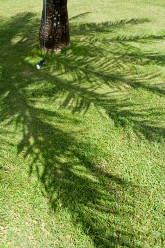 Northern Mariana Islands「Golf Club Against Palm Tree」:スマホ壁紙(7)