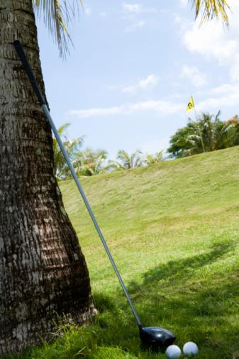 Northern Mariana Islands「Golf Club Against Palm Tree」:スマホ壁紙(6)