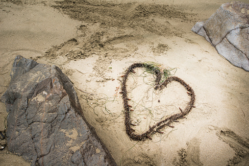 Sayulita「High angle view of knotted seaweed in heart shape on beach」:スマホ壁紙(19)