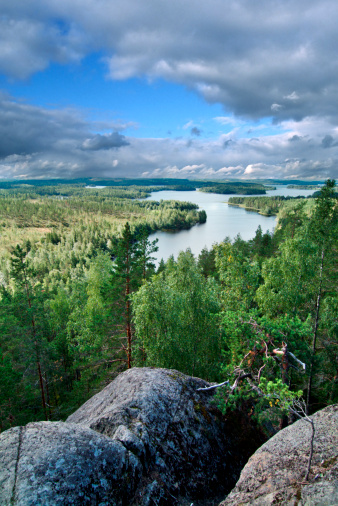 Finland「High angle view of river flowing through forest」:スマホ壁紙(5)
