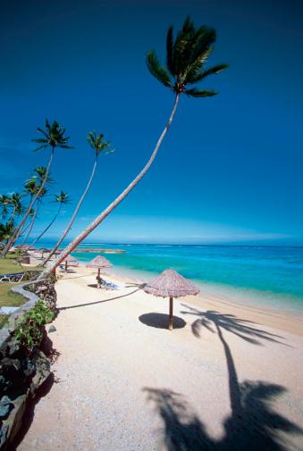 Nadi「High angle view of sunshades on Warwick Resort Beach, Nadi, Viti Levu Island, Fiji」:スマホ壁紙(3)