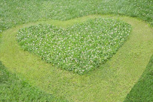 ハート「High angle view of heart mowed in grass lawn」:スマホ壁紙(1)