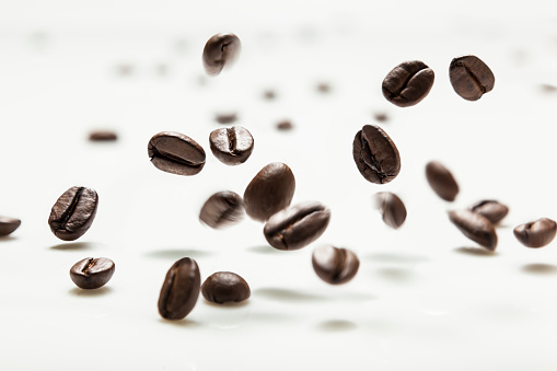 Roasted Coffee Bean「coffee bean hit on milk white board」:スマホ壁紙(4)