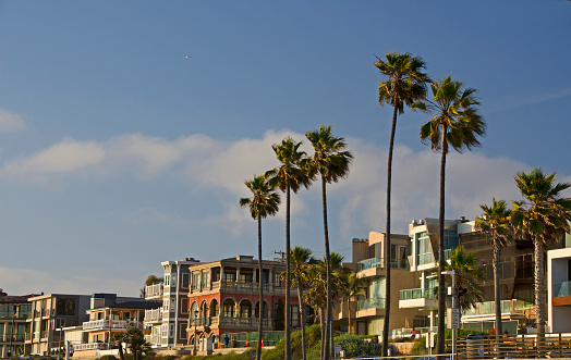 Manhattan Beach「Manhattan Beach」:スマホ壁紙(12)
