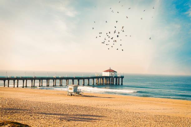 Manhattan Beach pier with birds:スマホ壁紙(壁紙.com)