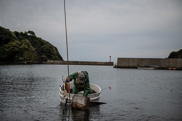 Octopus「The Tub Boat Fishermen Of Sado Island」:写真・画像(16)[壁紙.com]