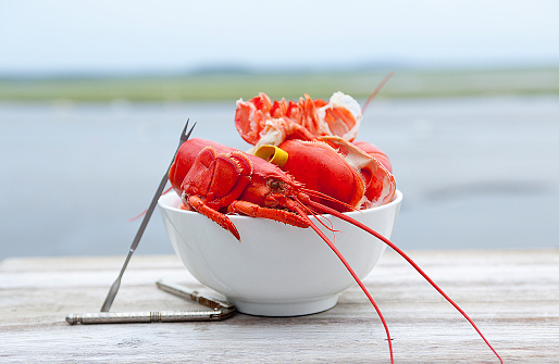 Lobster - Seafood「Lobster shells in a bowl with eating utensils, on a patio by the sea in New England - USA—part of a series」:スマホ壁紙(9)