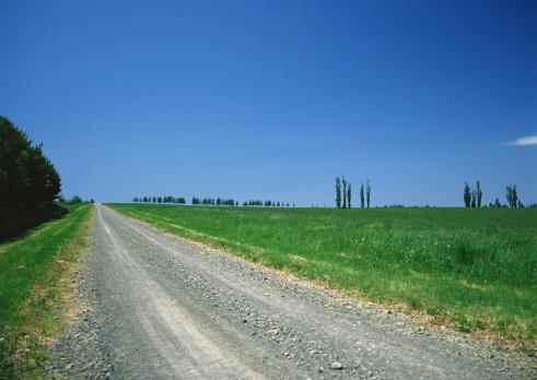 Grove「Grassy Plain」:スマホ壁紙(6)
