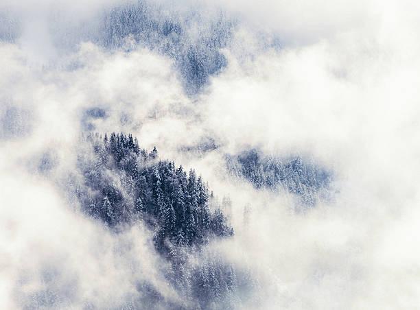 Winter mountain forest shrouded in mist:スマホ壁紙(壁紙.com)