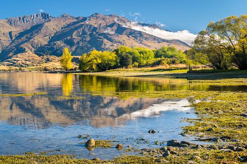 Mt Aspiring「New Zealand, South Island, Gledhu Bay at Lake Wanaka」:スマホ壁紙(9)