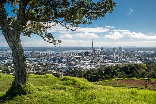 Auckland「New Zealand, North Island, Mount Eden, Auckland, cityscape」:スマホ壁紙(17)