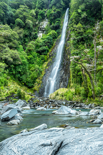 Mt Aspiring「New Zealand, South Island, Thunder Creek Falls at Haast river」:スマホ壁紙(5)