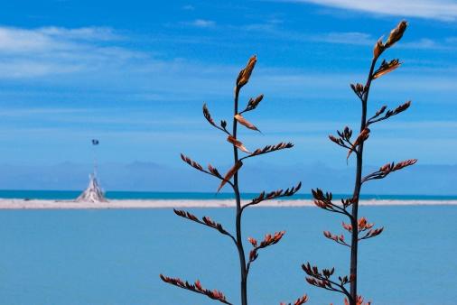 New Zealand Culture「New Zealand Flax Flower and Sea」:スマホ壁紙(0)