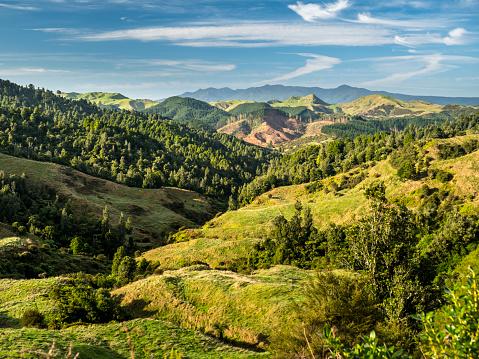 Rolling Landscape「New Zealand, North Island, Region Waikato, scenics」:スマホ壁紙(14)