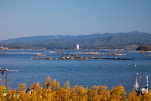 秋+京都「Kumihama Port, Kyotango City, Kyoto Prefecture, Honshu, Japan」:スマホ壁紙(17)