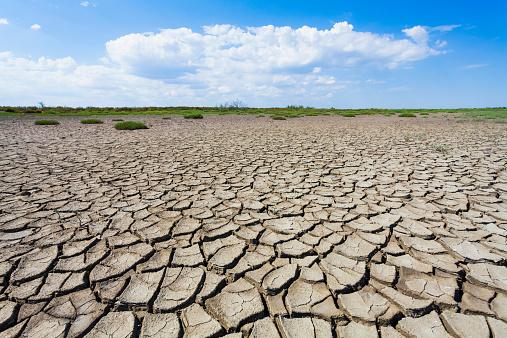 France「France, Provence, Camargue, view to eroded soil at marshland」:スマホ壁紙(6)