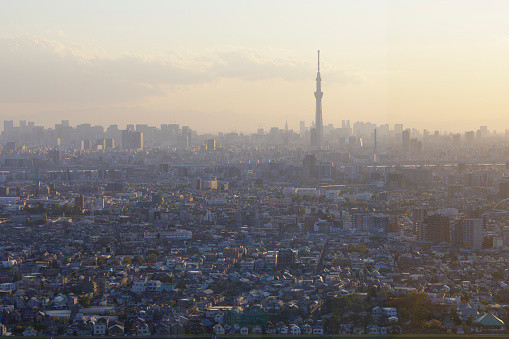 Tokyo Tower「Sunset over the urban sprawl of the city of Tokyo, Japan.」:スマホ壁紙(19)