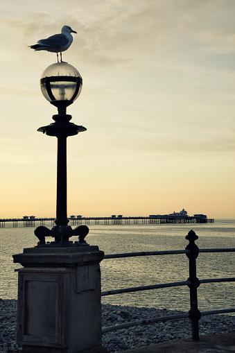 Beauty「Sunset over the pier and a calm sea」:スマホ壁紙(15)