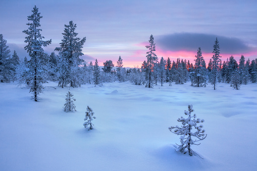 Finland「Sunset over Frozen Winter landscape, Lapland, Finland」:スマホ壁紙(2)