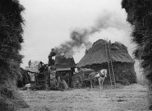Barley「Threshing Barley」:写真・画像(17)[壁紙.com]