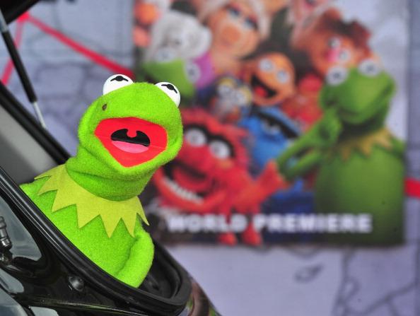 """El Capitan Theatre「Premiere Of Disney's """"Muppets Most Wanted"""" - Arrivals」:写真・画像(8)[壁紙.com]"""