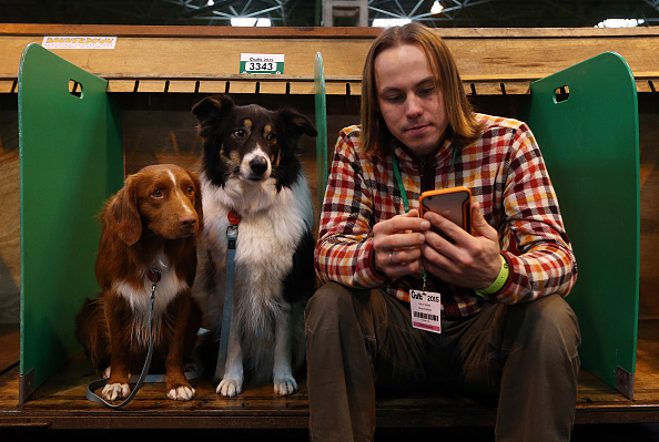 Wireless Technology「First Day Of Crufts 2015」:写真・画像(2)[壁紙.com]
