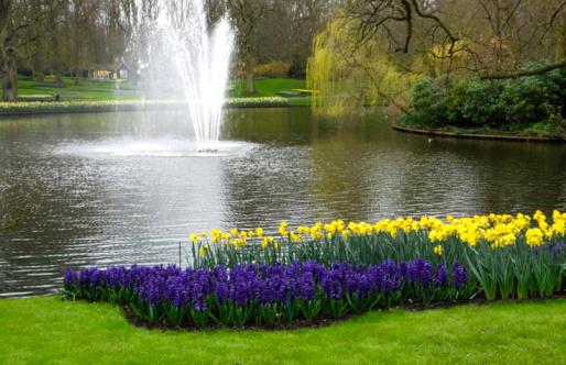 Keukenhof Gardens「Keukenhof Park, Netherlands」:スマホ壁紙(1)