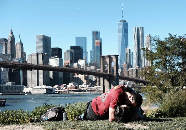 イネ科「New York Basks In Sunny Indian Summer Day」:写真・画像(1)[壁紙.com]