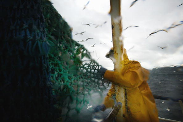 Fishing Boat「Scottish Trawlermen Work The Waters Of The North Atlantic」:写真・画像(15)[壁紙.com]