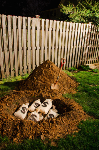Surprise「$ money bags buried in yard」:スマホ壁紙(16)