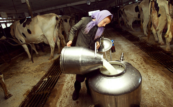 Pouring「Amish Life In Pennsylvania」:写真・画像(15)[壁紙.com]
