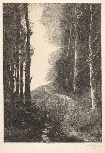 Birch Tree「Landscape At Bouleaux. Creator: Alphonse Legros (French」:写真・画像(7)[壁紙.com]