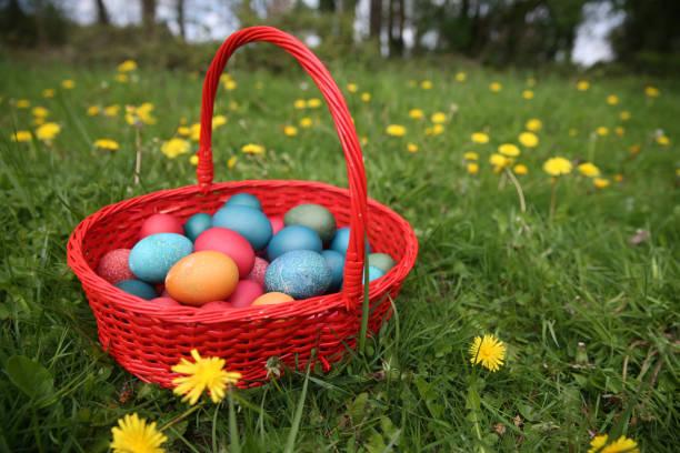 Colorful easter eggs in a basket. France.:スマホ壁紙(壁紙.com)
