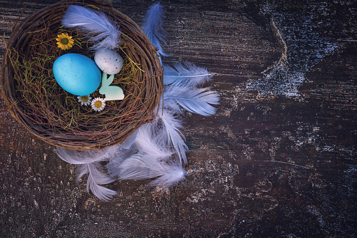 Easter Bunny「Colorful Easter Eggs Decoration on Wooden Background」:スマホ壁紙(18)