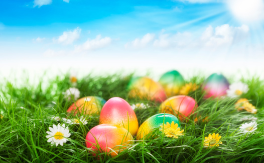 Easter「Colorful Easter Eggs Decorated on Green Grass」:スマホ壁紙(3)