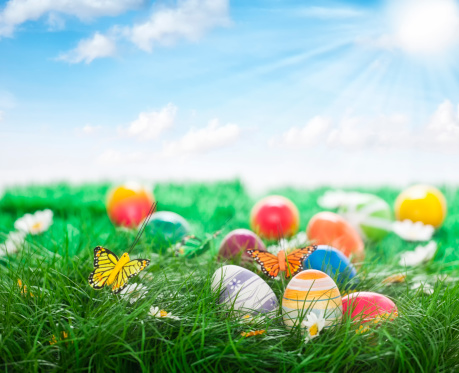 Easter「Colorful Easter Eggs Decorated on Green Grass」:スマホ壁紙(12)