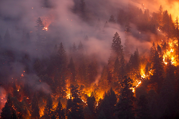 Forest Fire「Death Toll Rises To 6 As Redding Area Wildfire Spreads To 90,000 Acres」:写真・画像(8)[壁紙.com]