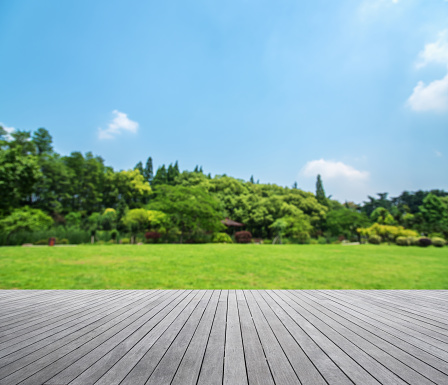 Grass「Wooden platform with green field defocused abstract background」:スマホ壁紙(16)