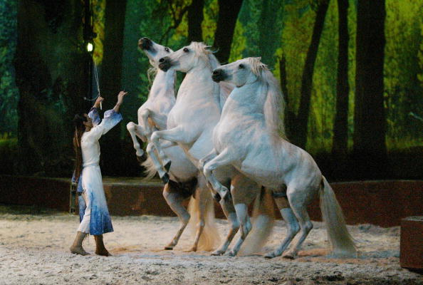 Multi Colored「CA: Opening Night Of Cavalia: A Magical Encounter Between Horse and Man - Show」:写真・画像(2)[壁紙.com]
