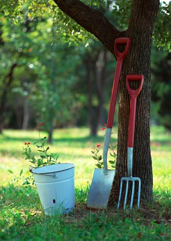 Gardening Fork「Gardening Tool」:スマホ壁紙(11)