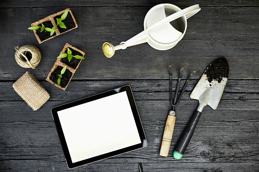 Planting「Gardening tools, seedlings and tablet on dark wood」:スマホ壁紙(6)