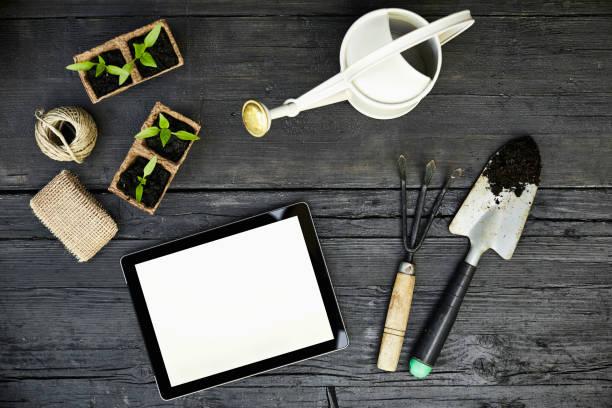 Gardening tools, seedlings and tablet on dark wood:スマホ壁紙(壁紙.com)